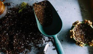 Minerální nebo organické? Jak to s hnojivem nepohnojit