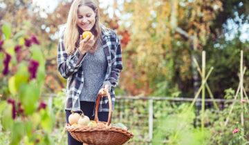 Podzimní hnojení:Vydatná večeřepřed zimním spánkem