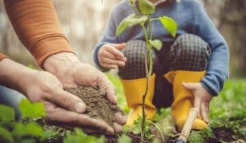 Březenna zahradě:Nejdůležitější měsíc vroce
